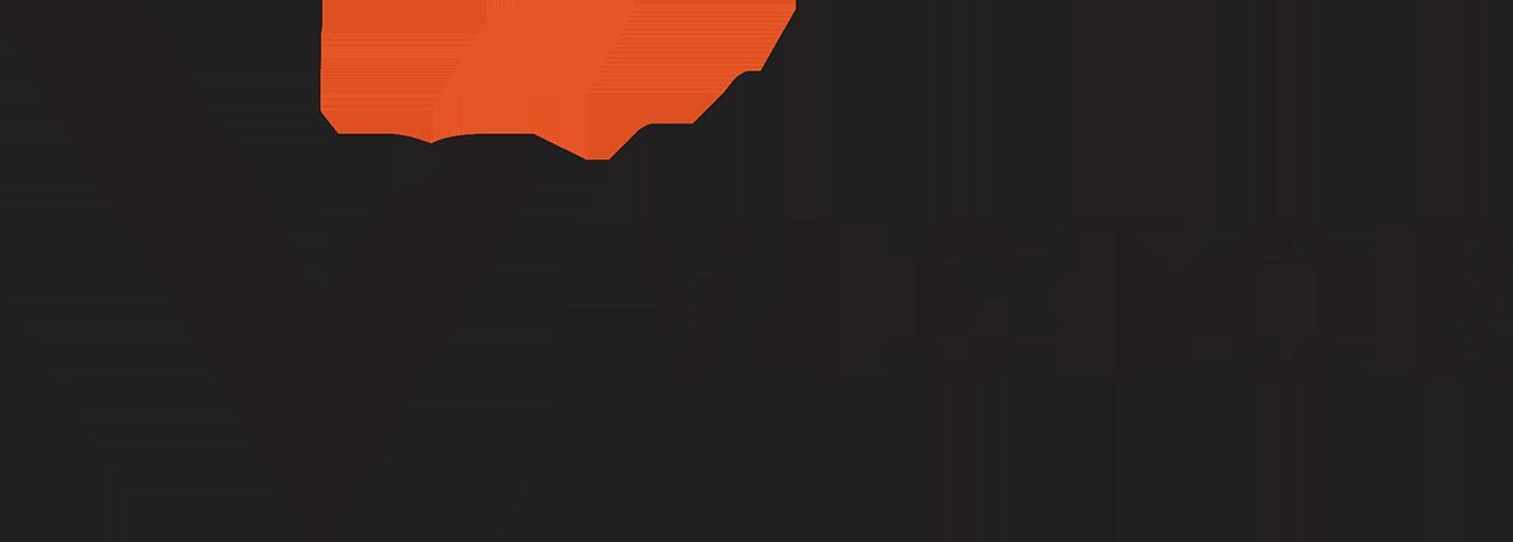 Victor Insurance Nederland